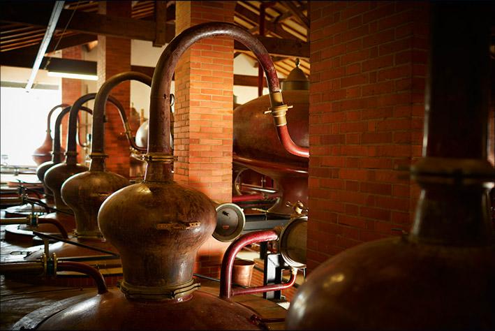 Maison D'Aincourt - L'âme de la distillerie